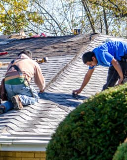 roof shingles replacement